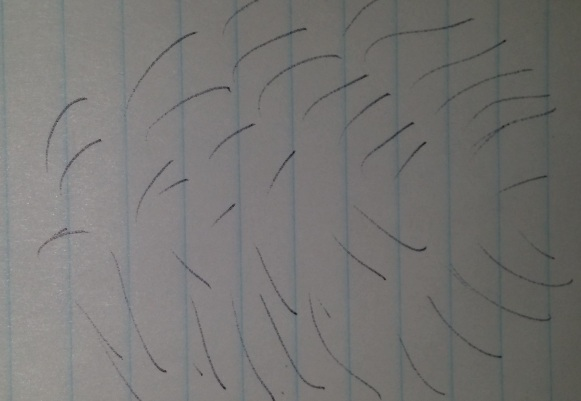 Renee's image of my hair all featherdin